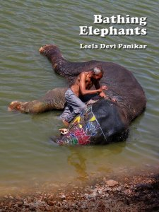 Bathing-elephants
